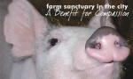 farm sanctuary benefit
