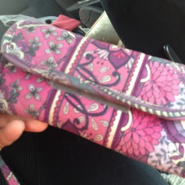 Lost Purse on the Road