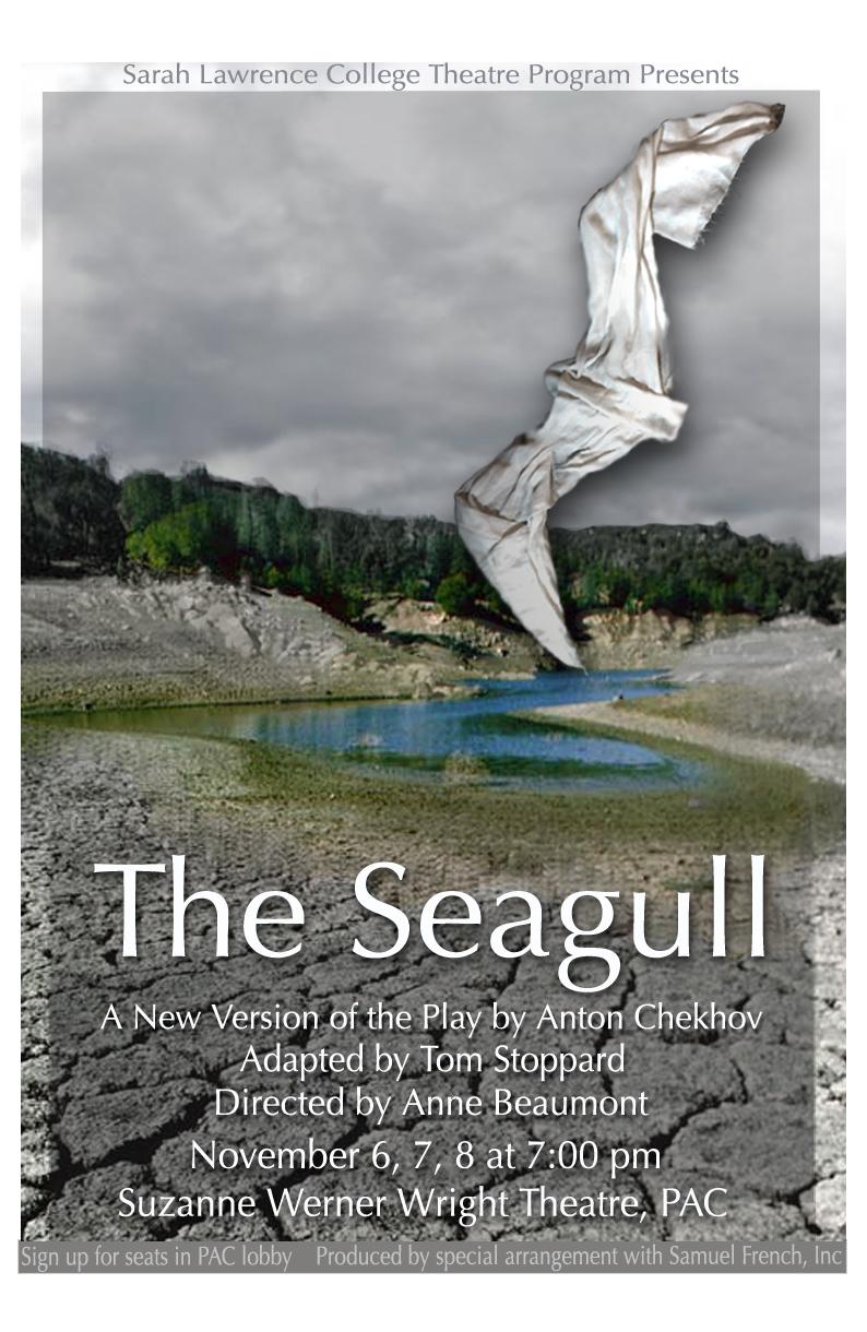 http://garyploski.com/wp-content/uploads/the-seagull-poster.jpg